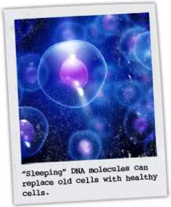 health_cells_polaroid
